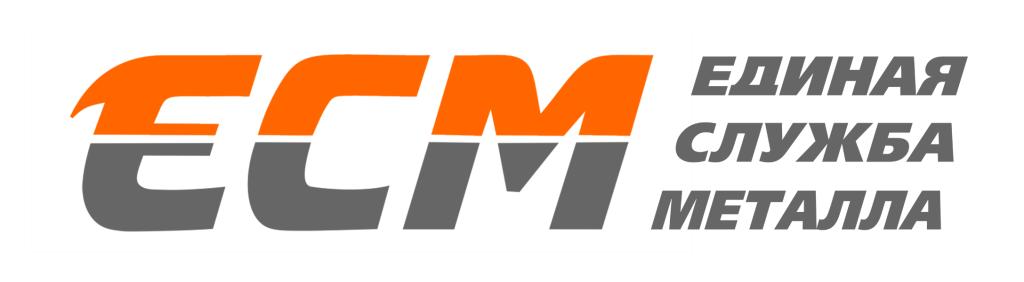 logo_web_ESM